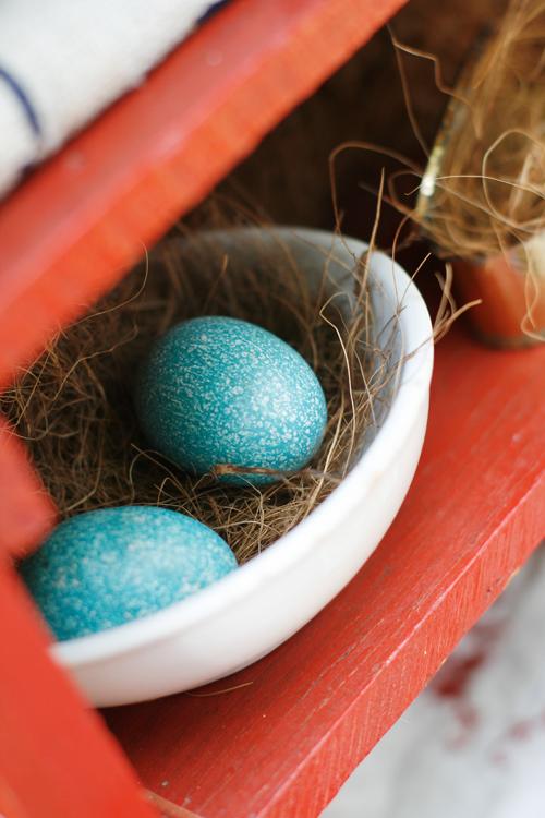 Blue eggs on red shelf