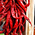 Hanging peppers 2